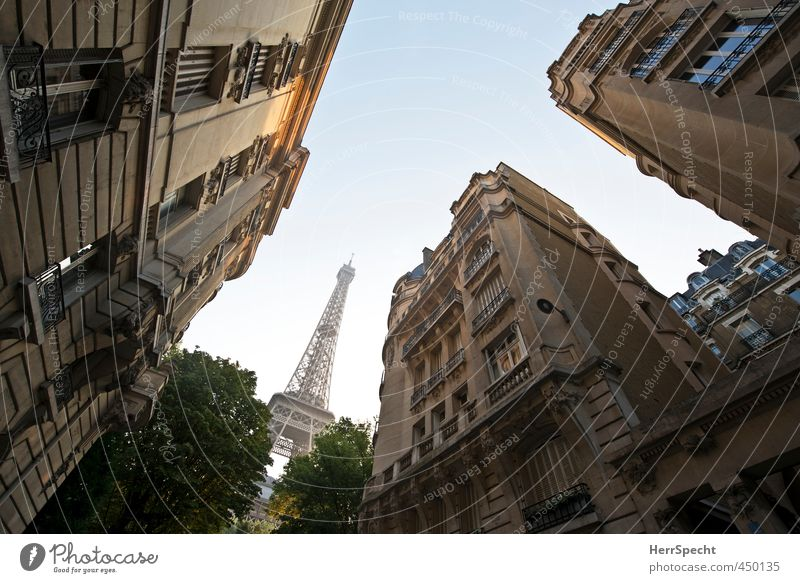 To kneel down Cloudless sky Beautiful weather Tree Paris France Capital city Deserted House (Residential Structure) Building Architecture Facade Balcony Roof