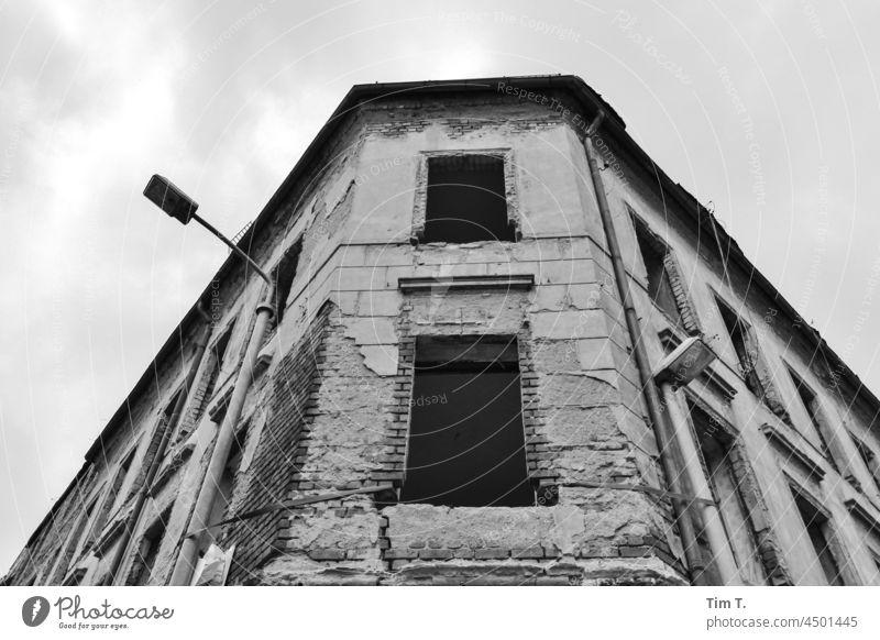 eine alte Hausfassade in Leipzig . Blick nach oben Fassade haus Gebäude Fenster architektur Architektur Architecture Ruined ruine s/w deutschland gebäude