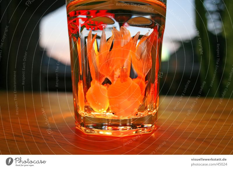 fish cocktail Goldfish Physics Delicious Light Rubber Photographic technology Water Glass Warmth Orange Nutrition fun
