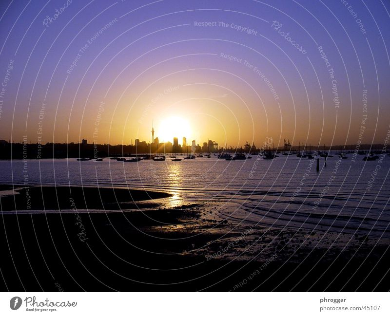 Water Sun Ocean Beach Calm Skyline Australia