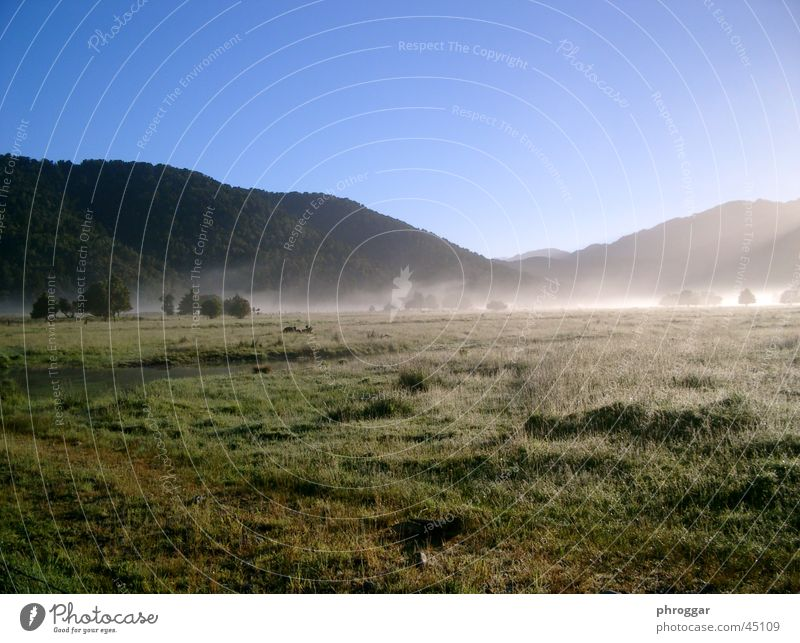 Sun Calm Meadow Fog Valley