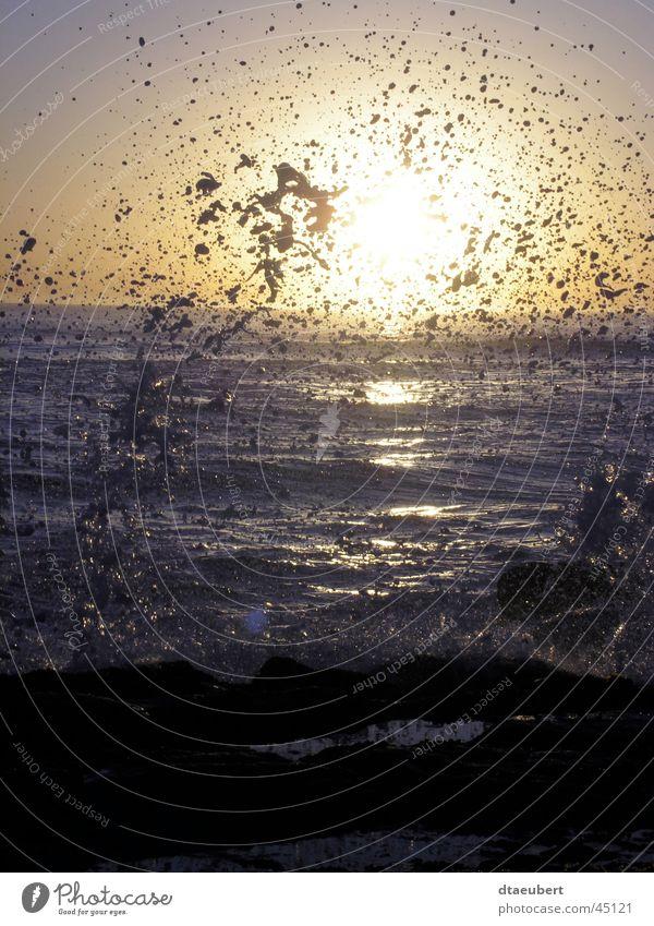 Nature Sun Ocean Drops of water