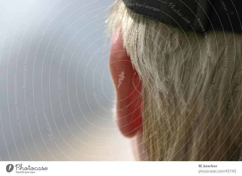 Human being Ear