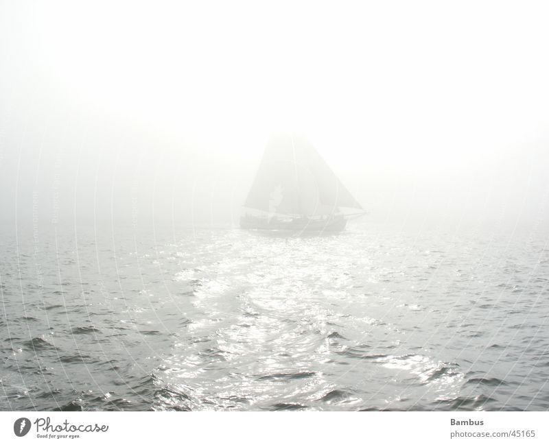 sailing vessel Sailing ship Ocean Netherlands Horizon Fog Navigation Sun Bright Water