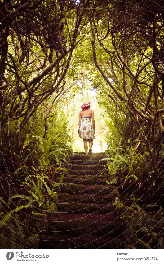 Human being Woman Nature Youth (Young adults) Plant Tree Young woman Landscape Forest Adults Dark Feminine Exceptional Garden Park Stairs