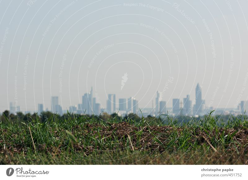 in the green Economy Financial Industry Sky Cloudless sky Meadow Field Frankfurt Outskirts Skyline High-rise Bank building Town in the country bacon belt Suburb