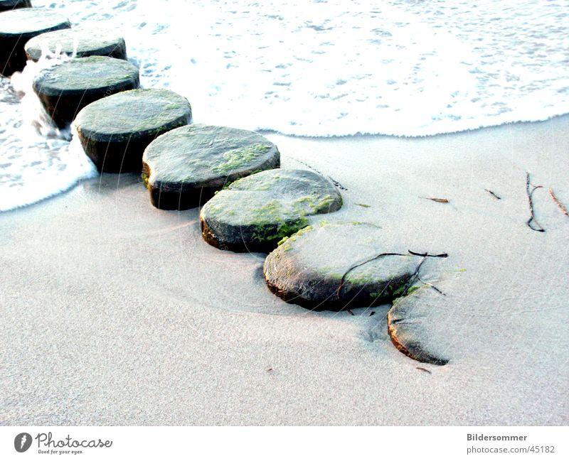 breakwater Break water Beach Wood Sand Water Baltic Sea