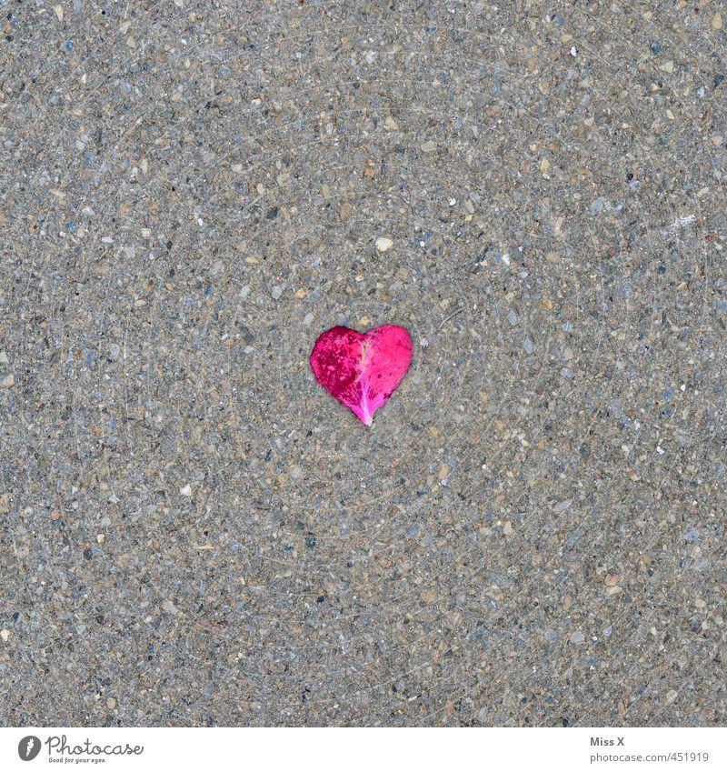 Love Street Emotions Sadness Lanes & trails Blossom Lie Moody Heart Transience Wedding Romance Rose Asphalt Infatuation Divide