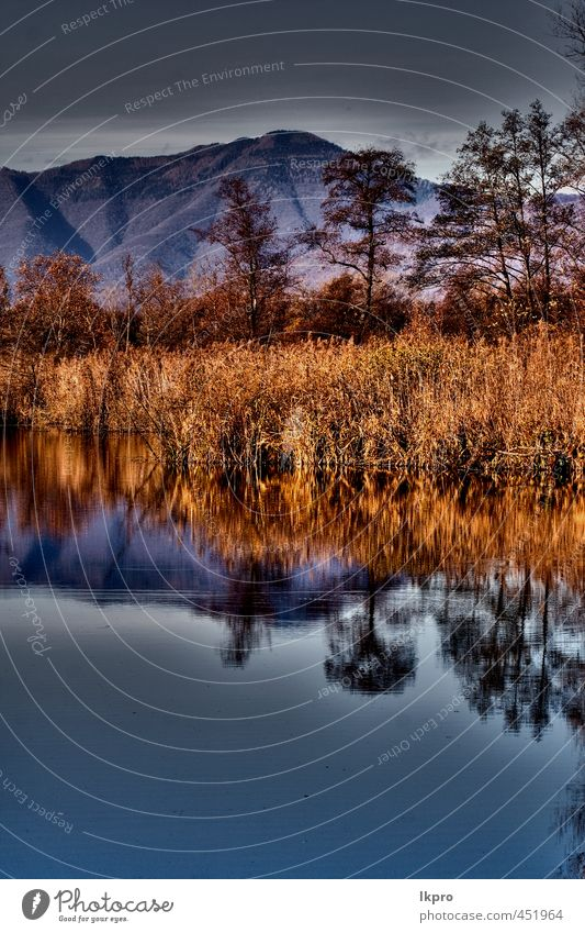 abstract autumn lake Relaxation Vacation & Travel Trip Mountain Nature Sky Clouds Autumn Tree Leaf Hill Lake Line Dirty Blue Brown Yellow Gray Red Colour marsh