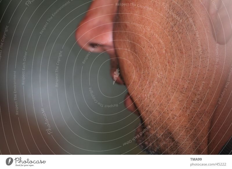 Man Face To talk Nose Facial hair Side Backwards Beard hair