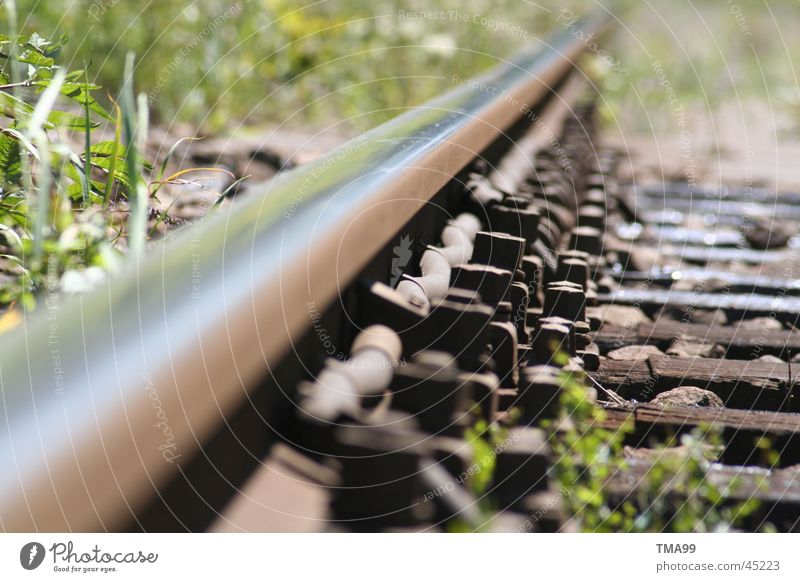 endless Railroad tracks Infinity Grass Transport db Far-off places Metal
