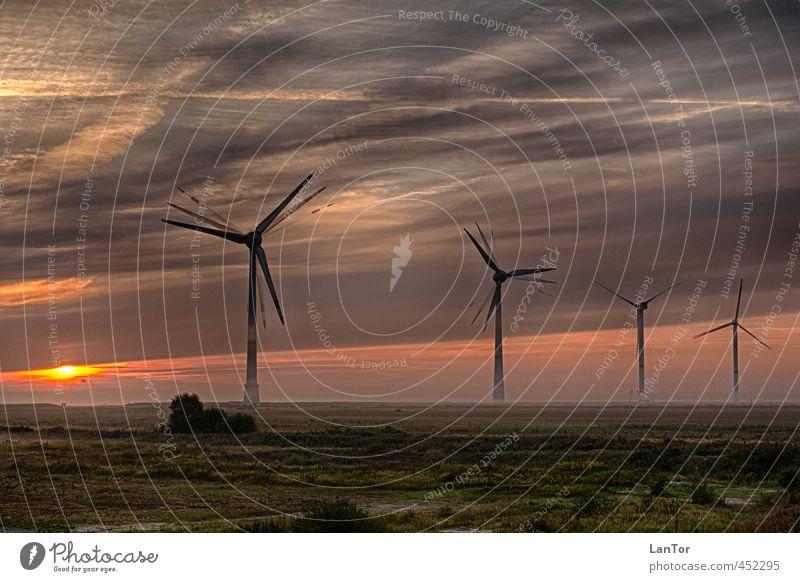 Renewable Energies Energy industry Renewable energy Wind energy plant Environment Nature Landscape Sunrise Sunset Fog Germany Moody Business Change
