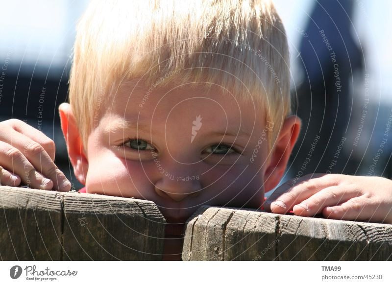 hoo-hoo Child Hand Tree trunk Playground Portrait photograph Human being Part Boy (child) Eyes