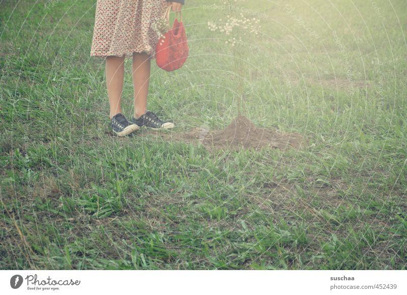 Little Red Riding Hood Feminine Girl young girl Child Infancy Body Skin Legs Feet 8 - 13 years Environment Summer Grass Garden Meadow Field Stand Green Footwear
