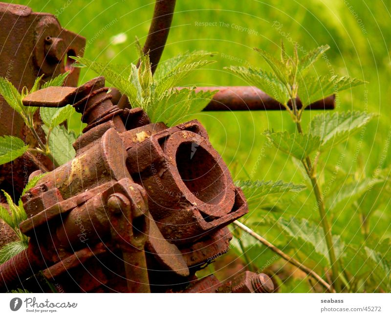 scrap plant Electrical equipment Technology Scrap metal Rust Agriculture Nature Trash
