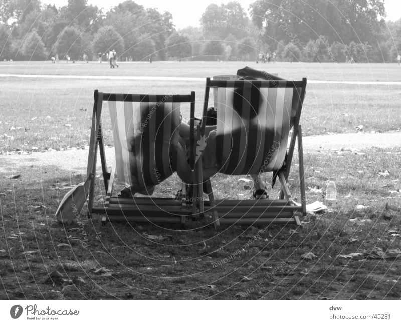 Vacation & Travel Meadow Couple Together Lie Sit In pairs Relationship Tourist England Deckchair Hyde Park