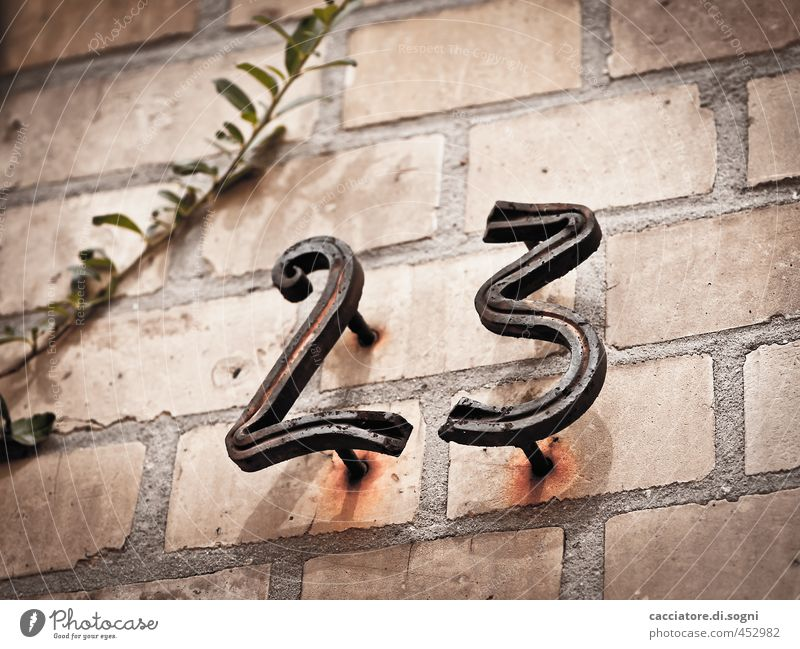 twenty three Twig Wall (barrier) Wall (building) House number Digits and numbers Old Dark Cold Gloomy Gray Orange Black Endurance Senior citizen Bizarre