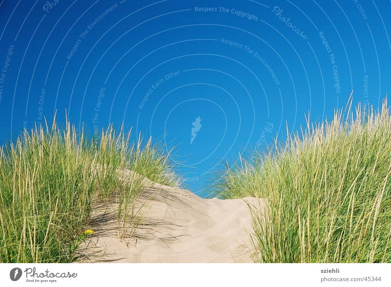 it can't get any bluer Beach Sandbank Horizon Blue Sky
