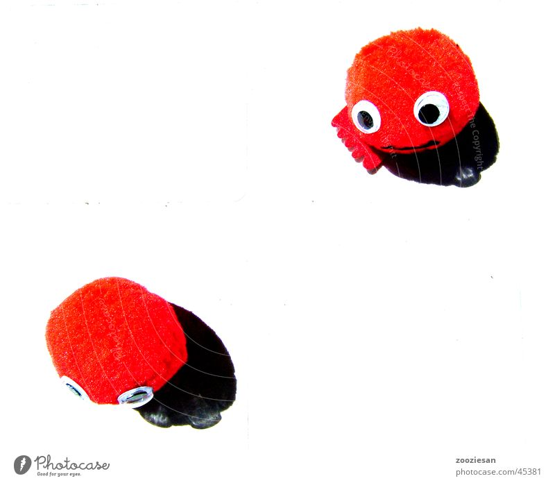 little reds : sorry Red Cute Leisure and hobbies Shadow pardon me