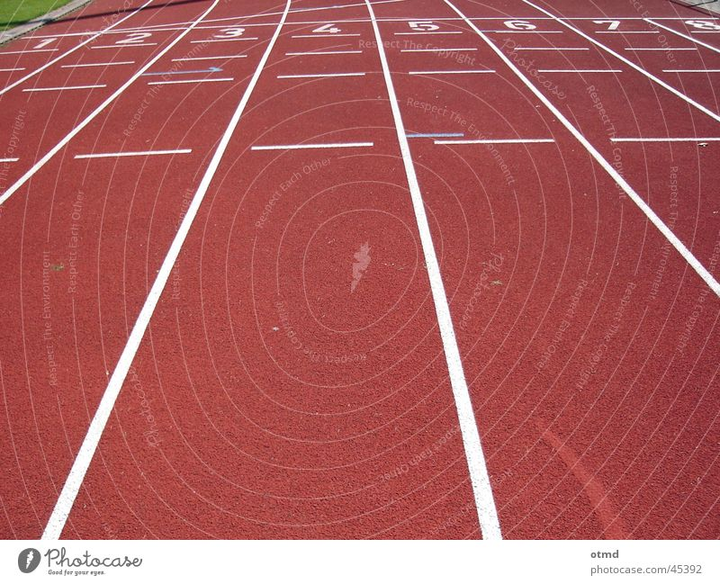 run for gold Stadium Running track Red Sports Walking Beginning Target Railroad Digits and numbers Exterior shot