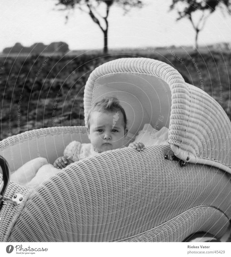in pram Baby carriage Child Girl Tree Field Hand Hair and hairstyles Cockscomb Degersen Toddler Transport basketwork 1955