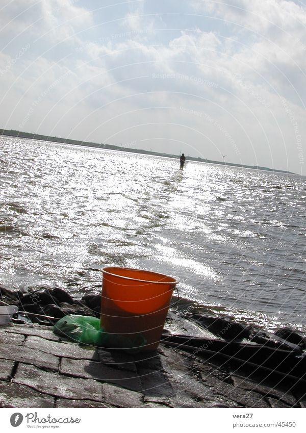 Human being Water North Sea Runner Bucket Walk along the tideland Water strider