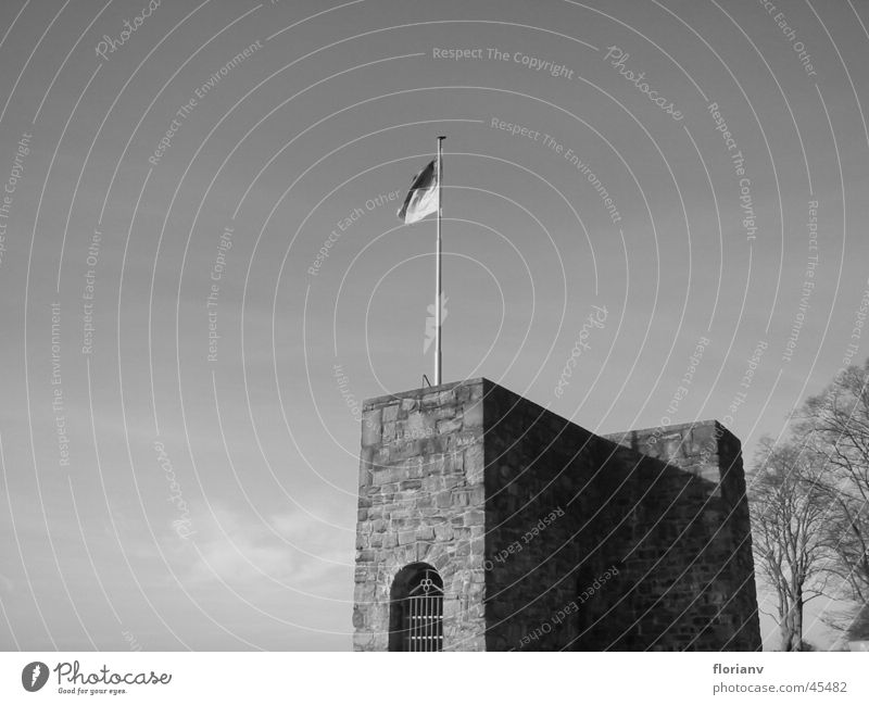 Tree Loneliness Autumn Architecture Flag Tower Castle Peak Monument Historic Ruin Flagpole Fortress Knight Medieval times