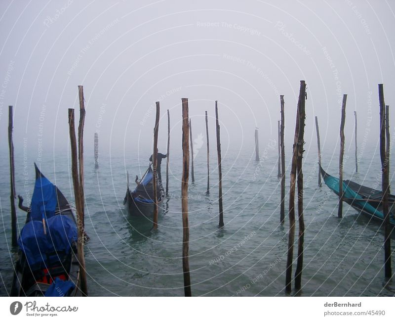 Venice in the fog Ocean Fog Europe Gondola (Boat) Haze Bright background Wooden stake Jetty Deserted Copy Space top