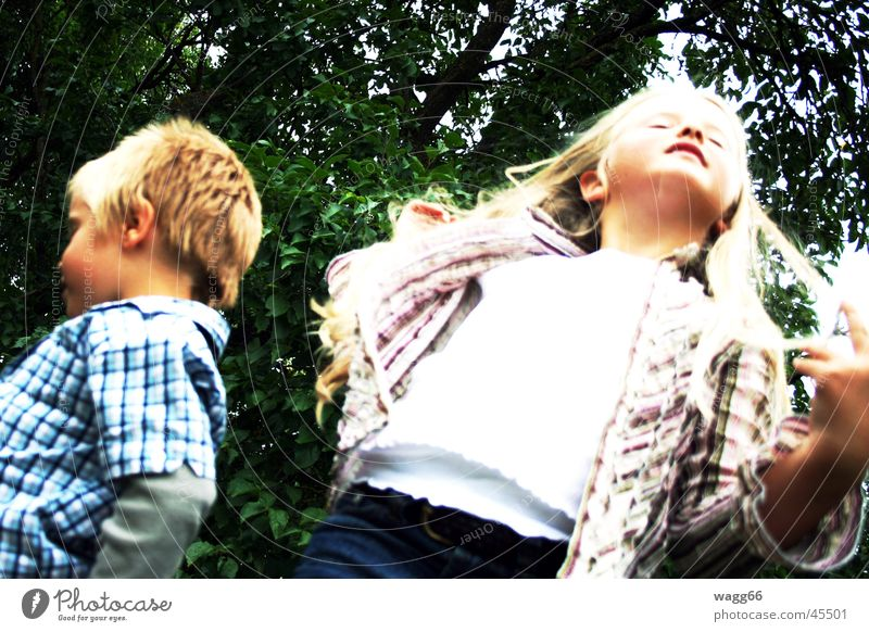 Child Family & Relations Blonde Argument Brothers and sisters Brother Sister