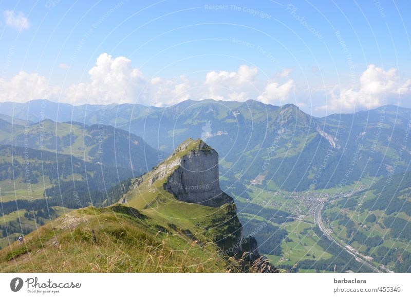 High percentage climb to the top. Leisure and hobbies Hiking Landscape Elements Earth Air Sky Clouds Summer Alps Mountain Forest of Bregenz Peak Tall Effort