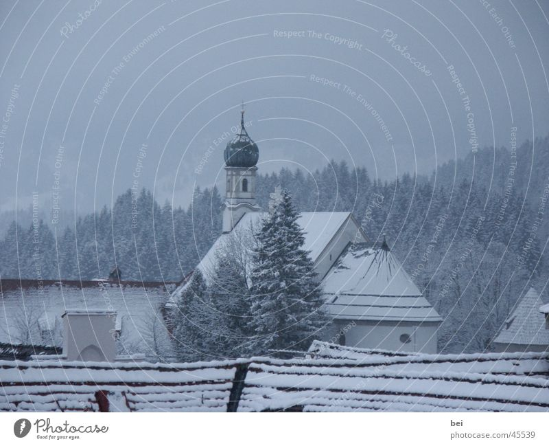 Forest Snow Landscape Religion and faith Germany
