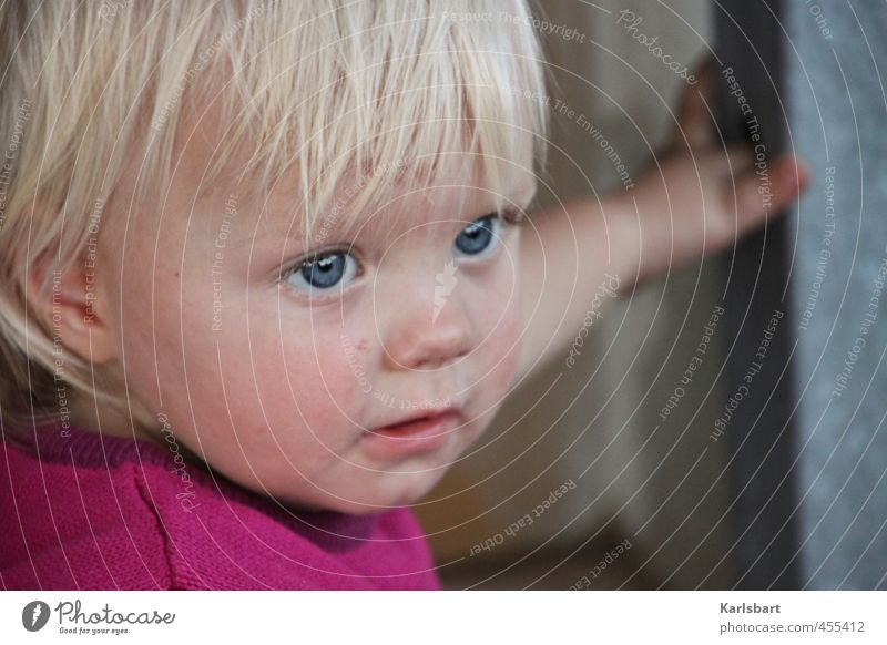 Human being Child Nature Girl Movement Playing Head Natural Healthy Blonde Infancy Study Observe Hope New To hold on
