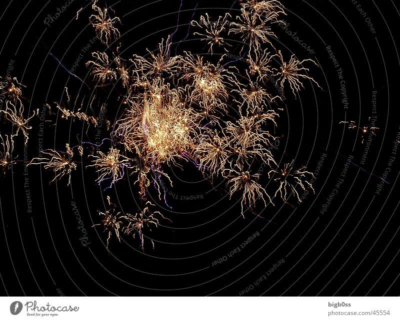 Style Firecracker Explosion