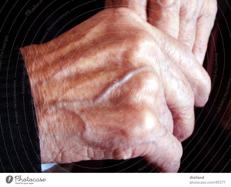 supplied with blood Hand Work and employment Time Calm Woman Old Vessel old hands Life Human being Detail