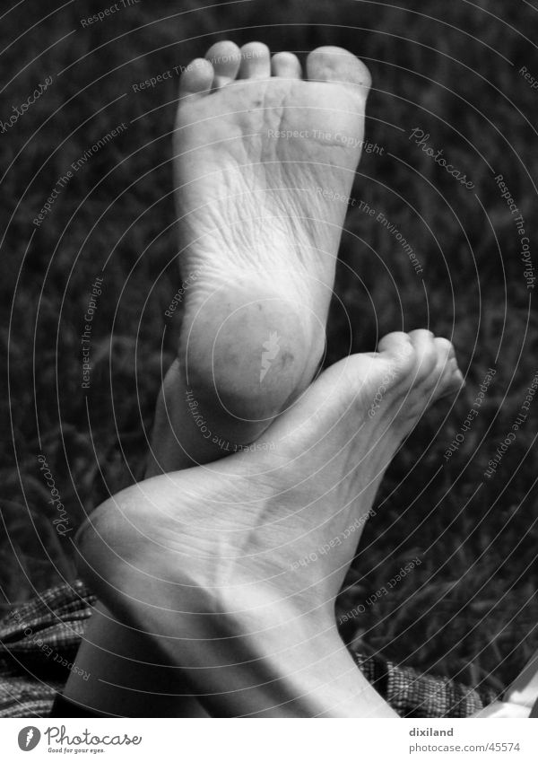 tango sphaerica Barefoot Toes Shoe sole Feet Black & white photo Detail In pairs