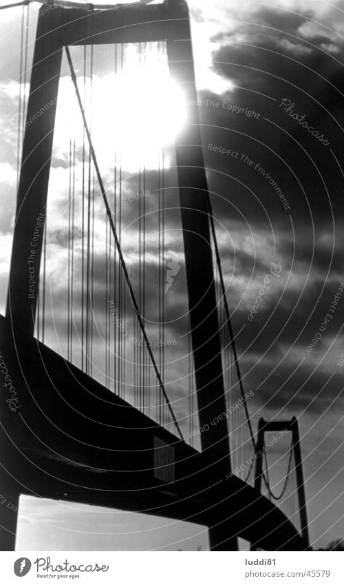 Rhine bridge Emmerich Back-light Black White Architecture Bridge