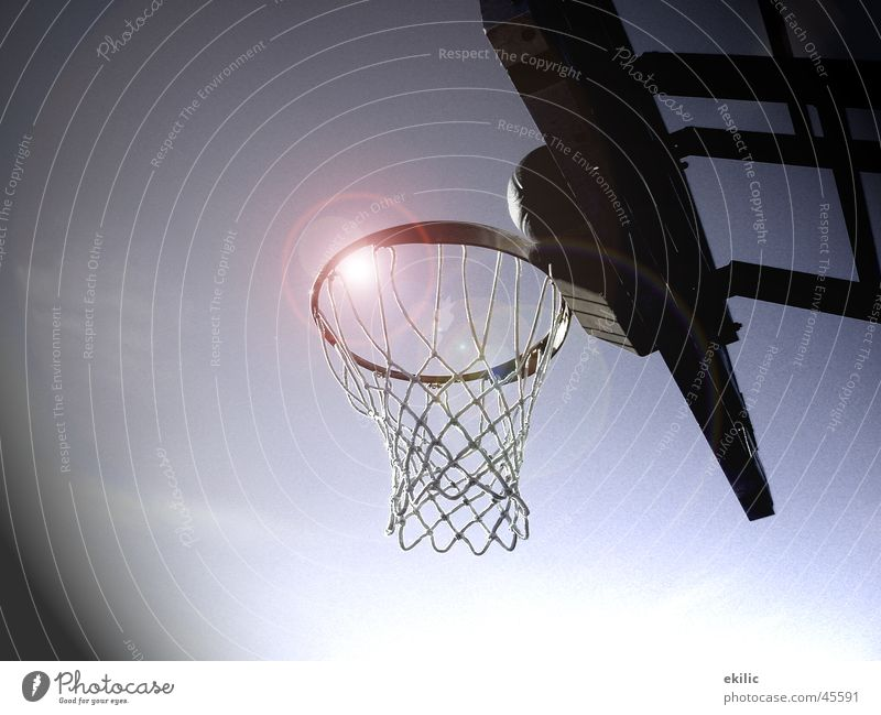 Sports Circle Basket Basketball