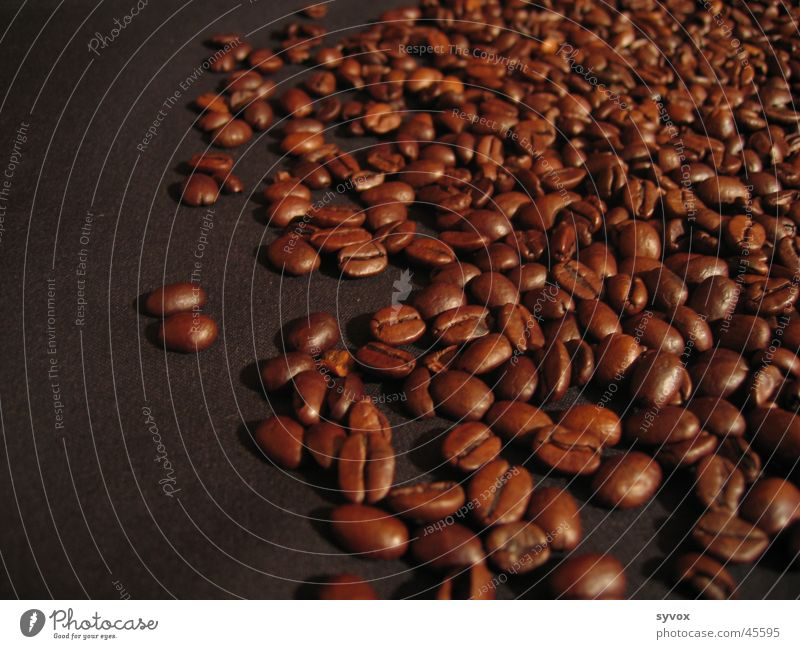 Nutrition Coffee Espresso Beans South Africa Legume Cappuccino