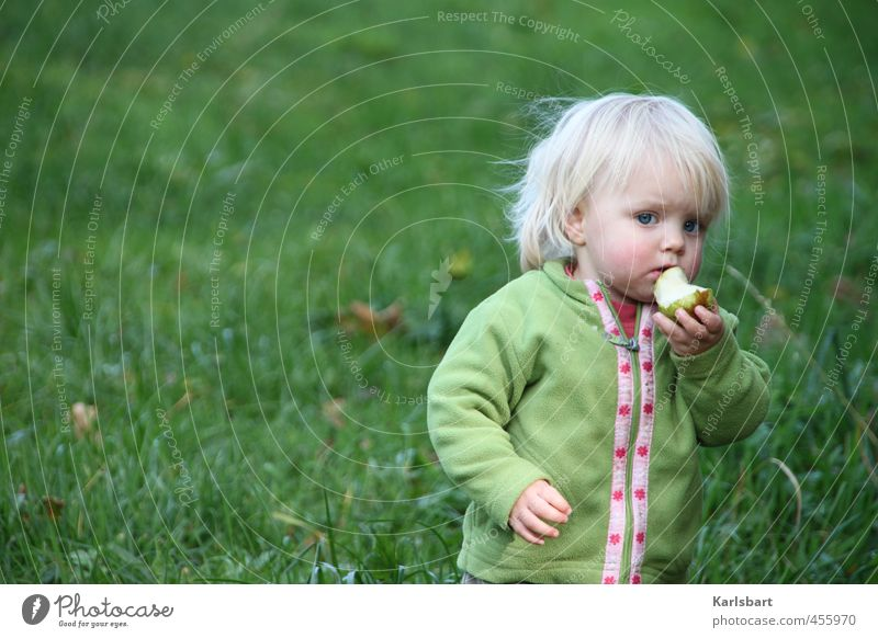 Human being Child Nature Girl Meadow Autumn Movement Grass Healthy Eating Food Fruit Blonde Infancy Study