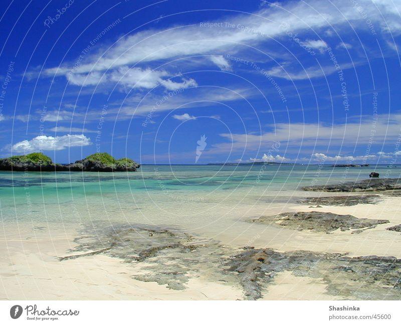 Beach Vacation & Travel Island Japan Blue sky National Park Coral Musical instrument Shamisen Okinawa Iriomote Hoshizuna Beach