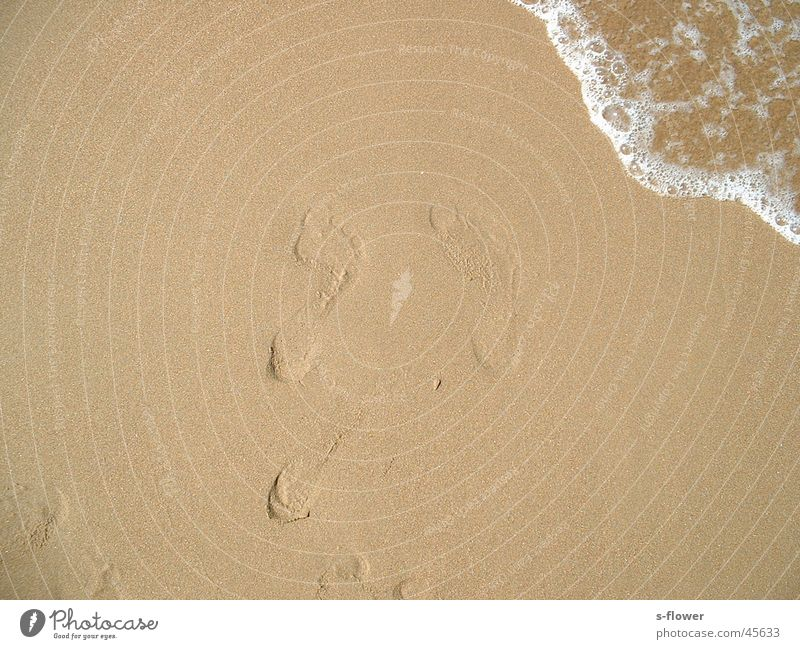 Barefoot in the sand Beach Ocean Traces in the sand Europe Water Sand