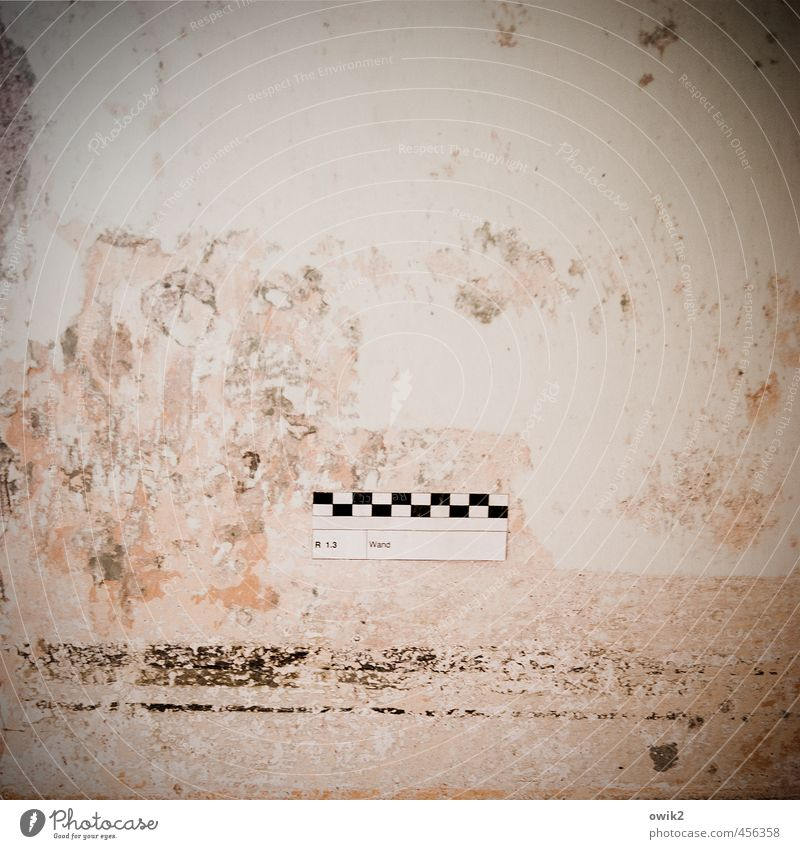 Old Wall (building) Wall (barrier) Living or residing Signs and labeling Characters Simple Transience Change Digits and numbers Copy Space Tracks Historic