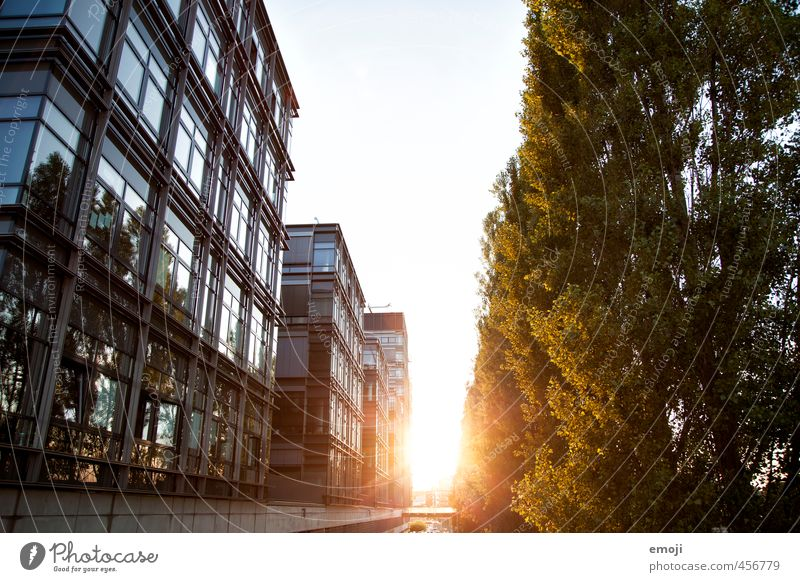 late summer Sun Tree Town Downtown House (Residential Structure) Bank building Facade Natural Warmth Colour photo Exterior shot Deserted Evening Sunlight