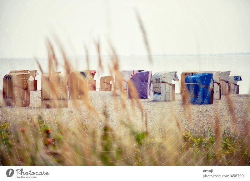 Sky Nature Beautiful Ocean Landscape Beach Environment Free Bushes Baltic Sea Cuddly Beach chair