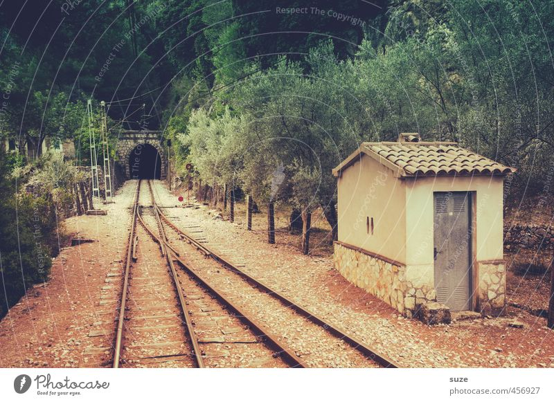 Nature Green Landscape Forest Environment Mountain Warmth Lanes & trails Earth Transport Target Dry Railroad tracks Traffic infrastructure Majorca South