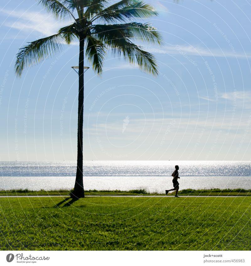 run in the blazing sun Fitness Sports Training Jogging Running track Man Adults 1 Human being Sky Beautiful weather Warmth Palm tree Meadow Coast Ocean
