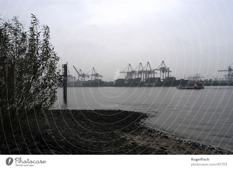 Autumn Gray Watercraft Coast Hamburg Industry Gloomy River Harbour Crane Elbe Bad weather