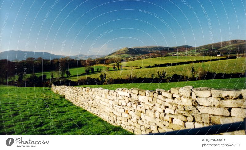irish wall Wall (barrier) Meadow Green Hill Horizon Landscape Nature Mountain Ireland