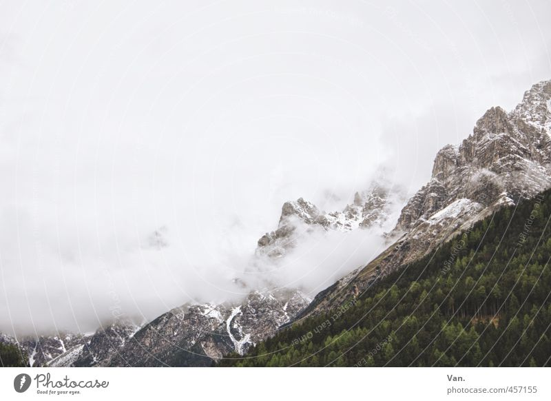 Cotton candy mountains² Mountain Hiking Nature Landscape Plant Sky Clouds Bad weather Fog Snow Tree Forest Rock Alps Cold Gray Green White Steep Colour photo