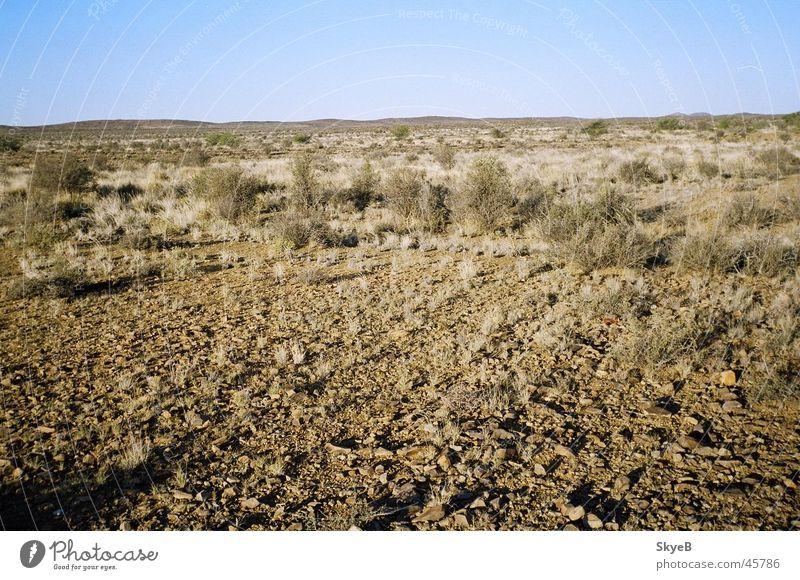 Karoo Great Karoo South Africa Desert Garden Route